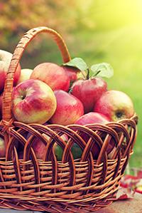 La pomme, un fruit santé