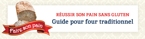 Guide pour four traditionnel