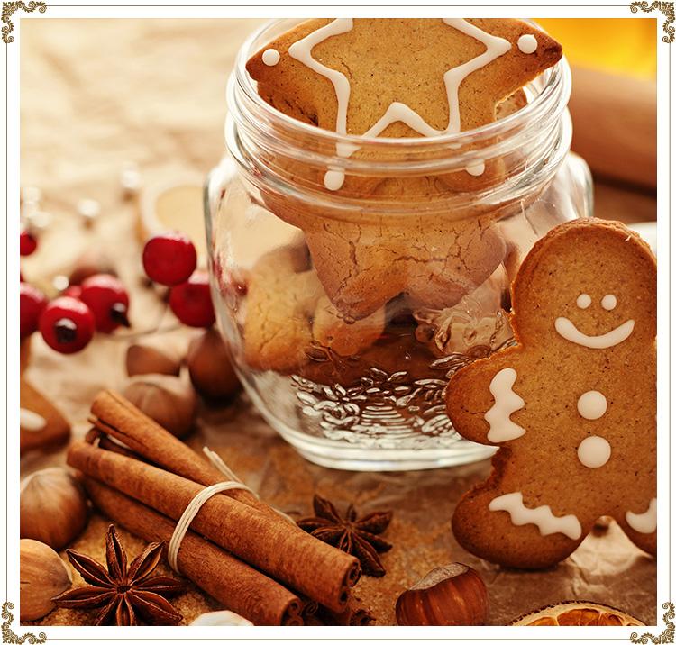 Biscuits Pain D Epices Sans Gluten Sans Caseine Et Bio Pain